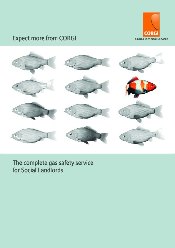 Corgi-SocialLLords-4pp
